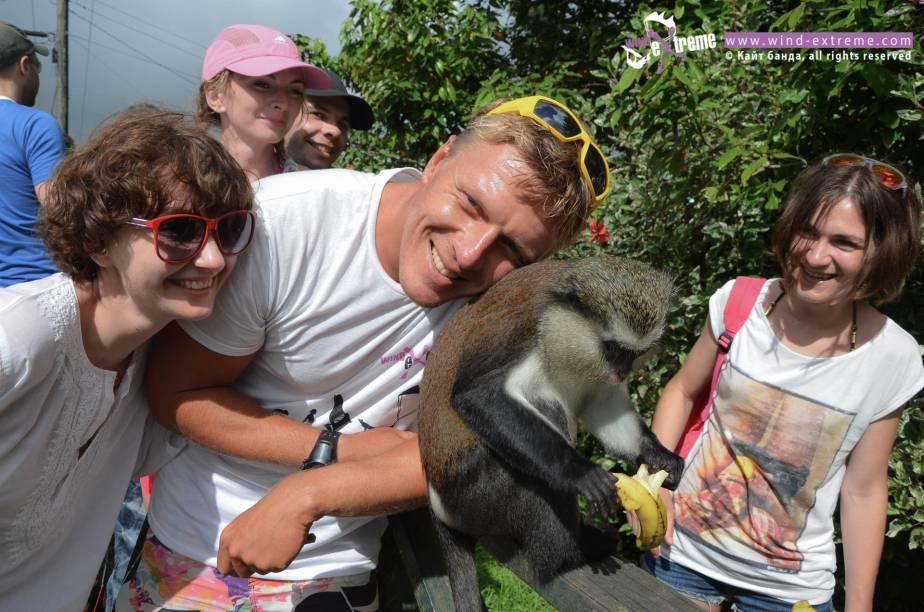 Национальный парк с обезьянками